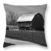 Small And Big Barns Monochrome Throw Pillow