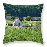 Small Austrian Cemetery  Throw Pillow