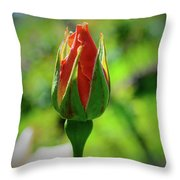 Small Beginnings Throw Pillow