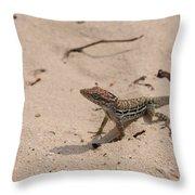 Small Brown Lizard Sitting On A White Sand Beach Throw Pillow