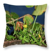 Small But Stirring Throw Pillow