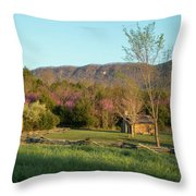 Small Cabin At Historic Martin's Station Throw Pillow