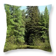 Small Country Pond Throw Pillow