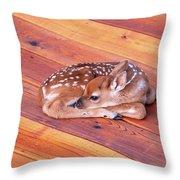 Small Deer Fawn Resting On Cedar Wood Deck Throw Pillow