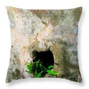 Small Ferns Throw Pillow