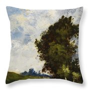 Small Floodplain Throw Pillow