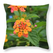 Small Flowers On A Tree Throw Pillow