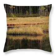 Small Forest Lake In Autumn Throw Pillow
