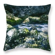 Small Freshwater Spring Under Rocks Throw Pillow