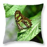 Small Green Throw Pillow