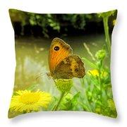Small Heath Butterfly Throw Pillow