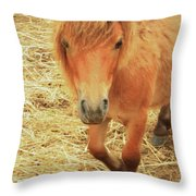 Small Horse Large Beauty Throw Pillow