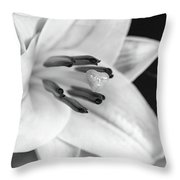 Small Lily-2 Bw Throw Pillow