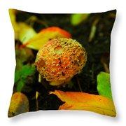 Small Mushroom In Autumn Throw Pillow
