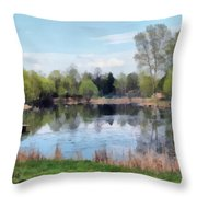 Small Pond In Tomilino Throw Pillow