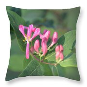 Small Purple Spring Flowers Throw Pillow