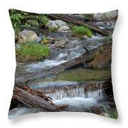 Small Rapids Throw Pillow