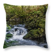 Small River Cascade Over Mossy Rocks In Northern Wales Throw Pillow