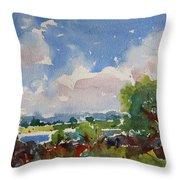 Small Riverside Throw Pillow