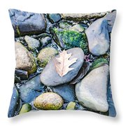 Small Rocks On The Beach Throw Pillow