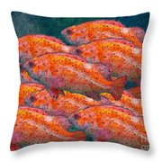 Small School Throw Pillow