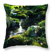 Small Stream In Green Forest Lapland Throw Pillow