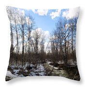 Small Stream In Spring Throw Pillow