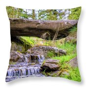 Small Waterfall 1 Throw Pillow