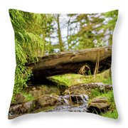 Small Waterfall 2 Throw Pillow