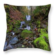 Small Waterfall At Lower Lewis River Falls Throw Pillow