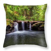 Small Waterfall At Rock Creek Throw Pillow