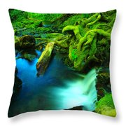 Small Waterfall  Throw Pillow