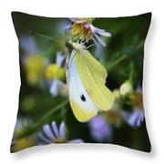 Small, White, Beautiful Throw Pillow