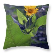 Small Yellow Flower And Green Big Leaves In The Sun Light. Throw Pillow