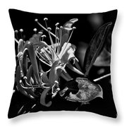 Smell That Honeysuckle Throw Pillow