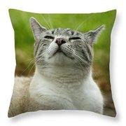 Smells Good Throw Pillow