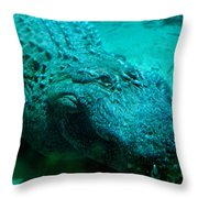 Smile Pretty Now Throw Pillow