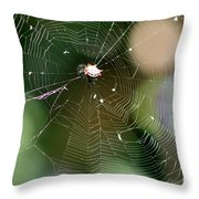 Smiley Spider Web  Throw Pillow