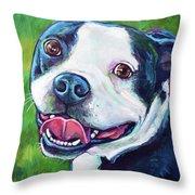 Smiling Boston Terrier Throw Pillow