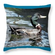Smiling Duck Throw Pillow