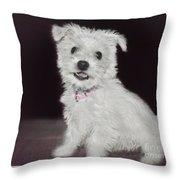 Smiling Puppy Throw Pillow