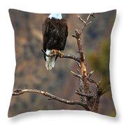 Smith Rock Bald Eagle Throw Pillow