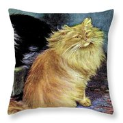 Smoke And Orange Persians Throw Pillow