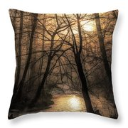 Smoke By The Water Throw Pillow