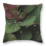 Smoke Tree Drops Throw Pillow
