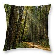 Smokey Forest Throw Pillow