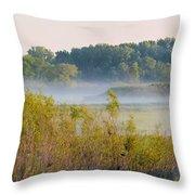 Smokey Marshland Throw Pillow