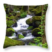 Smokey Mountain Stream Throw Pillow