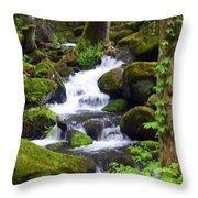 Smokey Mountain Stream Throw Pillow