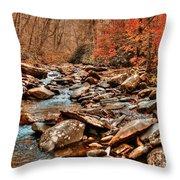 Smokey Mountain Streams And Fall Foilage 2 Throw Pillow